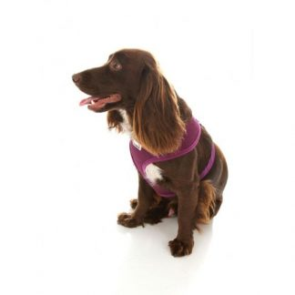 doodlebone-purple-harness