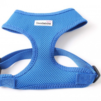 doodlebone-airmesh-harness-royal-blue