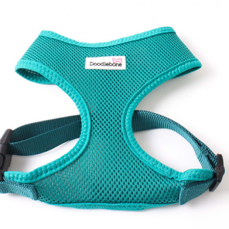 doodlebone-airmesh-harness-teal