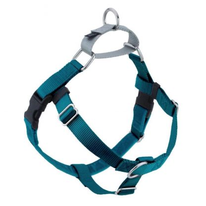 freedom-no-pull-harness-teal
