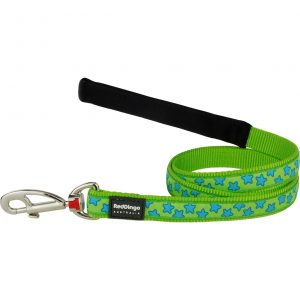 red-dingo-blue-start-on-lime-dog-lead