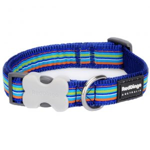 red-dingo-dark-blue-stripes-dog-collar