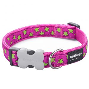 red-dingo-lime-star-on-pink-dog-collar