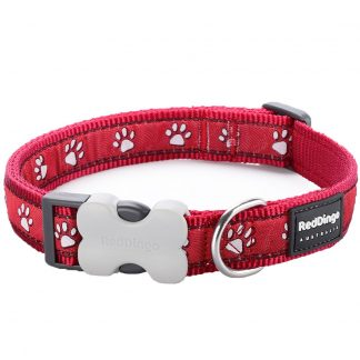 red-dingo-red-paw-prints-dog-collar