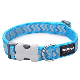 red-dingo-turquoise-reflective-ziggy-dog-collar