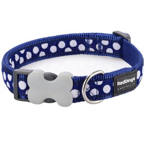 red-dingo-white-spot-on-blue-dog-collar
