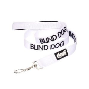 friendly-dog-collars-lead-blind-dog