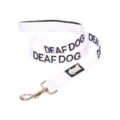 friendly-dog-collars-lead-deaf-dog