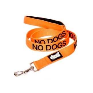 friendly-dog-collars-lead-no-dogs