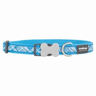 red-dingo-flanno-blue-dog-collar