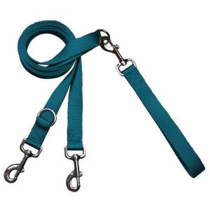 freedom-euro-training-Leash-teal