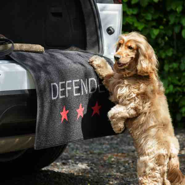 pet-rebellion-boot-defender-1