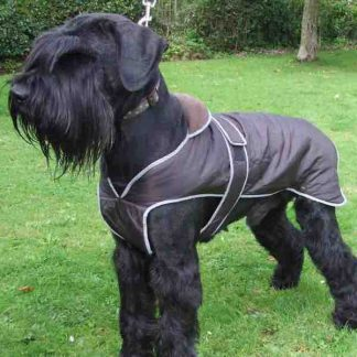 ancol-stormguard-dog-coat