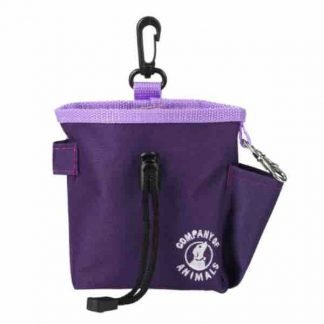 coa-treat-bag-purple