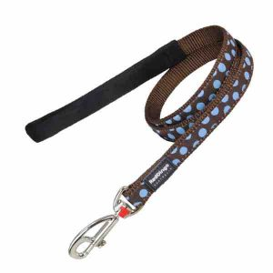 red-dingo-blue-spots-on-brown-dog-lead