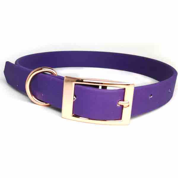 biothane-dog-collar-purple