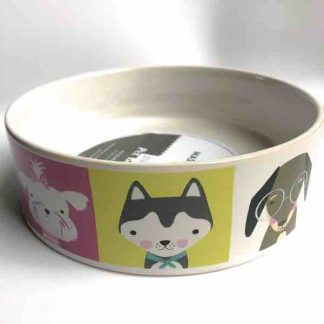 mason-cash-pawsitive-dog-bowl