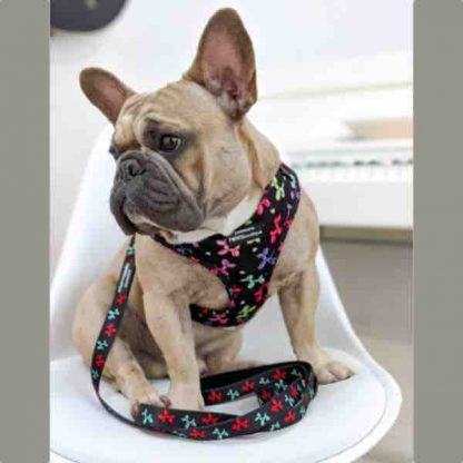 pawsome-paws-boutique-party-animal-harness