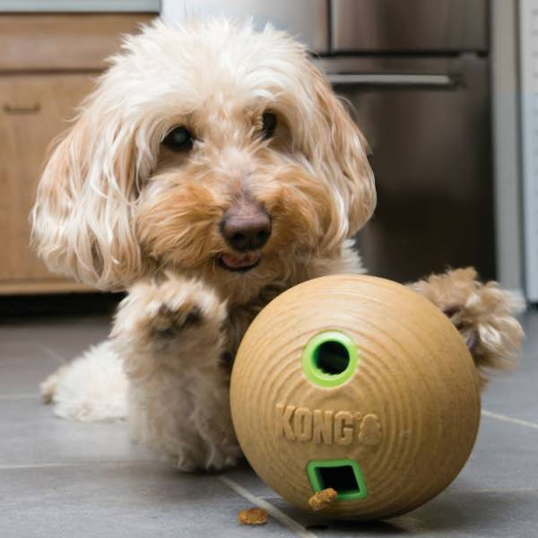 kong-bamboo-feeder-ball